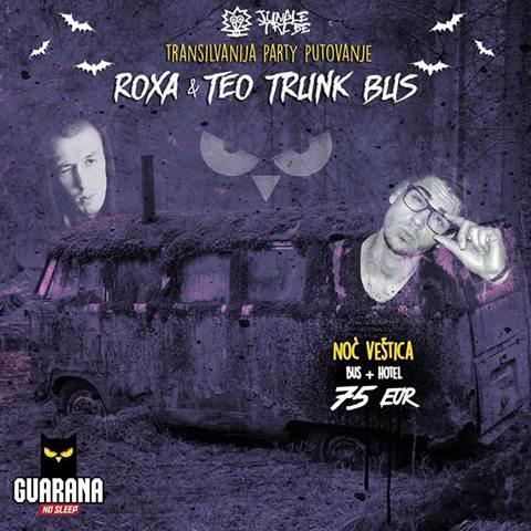 teo-trunk-romania