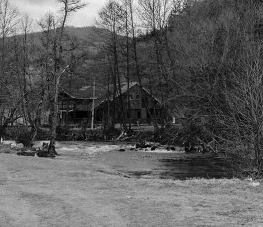 The Forest People Bijelo Polje Bistrica Lozna Luka